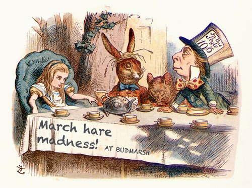 MARCH HARE MADNESS AT BUDMARSH