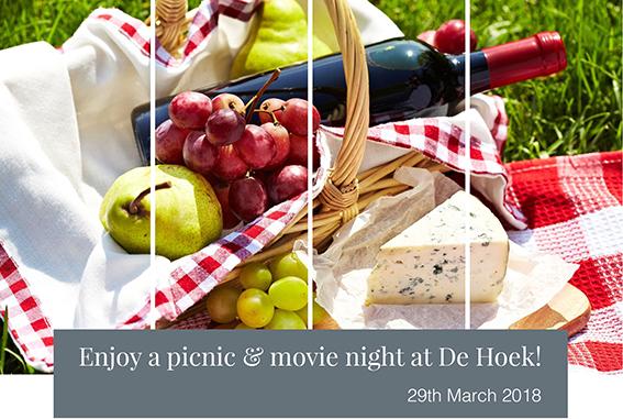 Movie & picnic at De Hoek