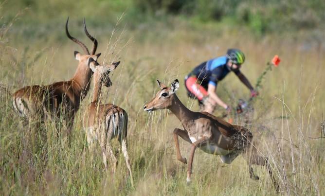 Mountain Biking in the Magalies Meander