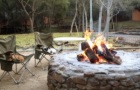 Warthogs Bush Camp exclusive!
