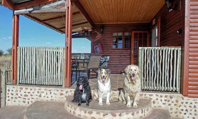 Pet friendly accommodation in Magaliesberg